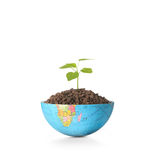 Globe  a environment concept Royalty Free Stock Photography