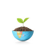Globe  a environment concept Royalty Free Stock Photo