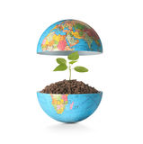 Globe  a environment concept Stock Images