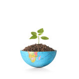 Globe  a environment concept Royalty Free Stock Image