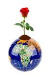 Globe et fleur rose Photographie stock libre de droits