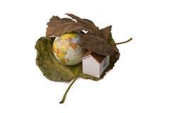 Globe et une petite maison modèle placée entre deux feuilles d'automne Images libres de droits