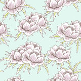 Globe flower pattern Stock Photos