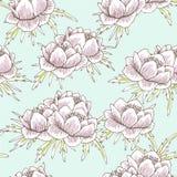 Globe flower pattern Stock Photos