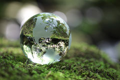 Globe in the forest. Glass globe resting on moss stone in a forest Royalty Free Stock Images