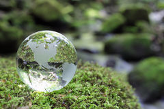 Globe in the forest. Glass globe resting on moss stone in a forest Stock Photo