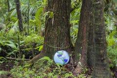 Globe gonflable dans la forêt tropicale Photo libre de droits