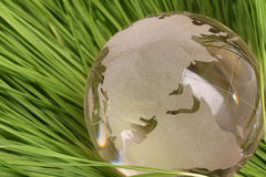 Globe in grass Royalty Free Stock Images