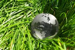 Globe in a grass Stock Photography