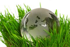 Globe in a grass Stock Images