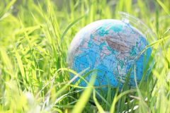 Globe on grass Royalty Free Stock Photography
