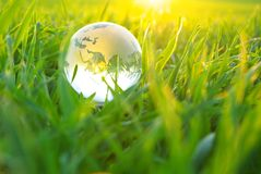 Globe in  grass Stock Photography