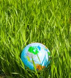 Globe in grass Royalty Free Stock Photo