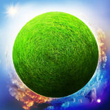 Globe with grass Royalty Free Stock Photos