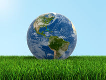 Globe on grass (clipping path included) Stock Photography