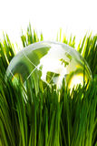 Globe and green grass Royalty Free Stock Image