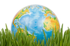 The globe in a green grass. stock photography