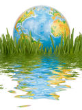The globe in a green grass. Royalty Free Stock Images