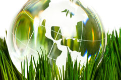 Globe and green grass Stock Image