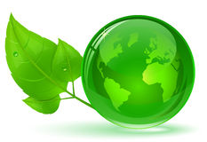 Globe and green leaves Royalty Free Stock Photo