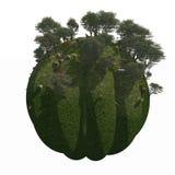 Globe Ground Mountain Garden. A surreal mountain garden isolated on a ridged Globe Stock Photography