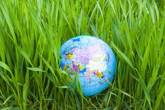 Globe in lawn Royalty Free Stock Photo