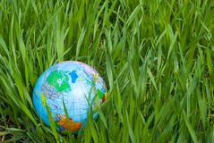 Globe in lawn Royalty Free Stock Photos