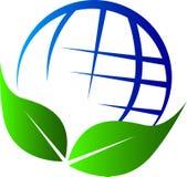 Globe leaf Stock Images
