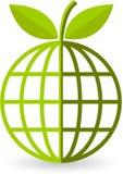 Globe leaf Royalty Free Stock Image