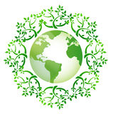 Globe and leaves around. Illustration design over a white background Royalty Free Stock Images