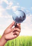 Globe light bulb Royalty Free Stock Images