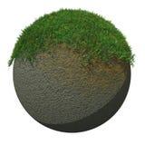 Globe meulé avec l'herbe Image stock