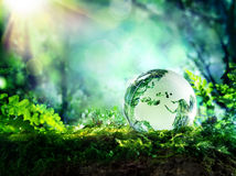 Globe on moss in a forest - Europe Stock Images
