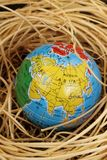 Globe in a nest Stock Photos