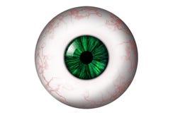 Globe oculaire humain avec l'iris vert images stock