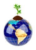 Globe and plant Stock Photos