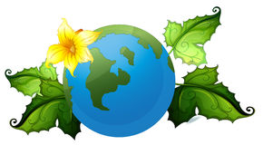 A globe with plants border Stock Photography