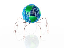 Globe spider Stock Photos
