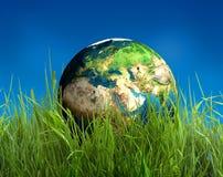 Globe sur l'herbe Image libre de droits