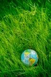 Globe sur l'herbe jour de terre, concept d'environnement Photographie stock libre de droits