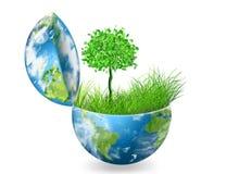 Globe sur l'herbe verte Images libres de droits