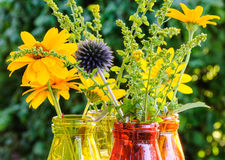 Globe thistle and other summer flowers in colorful glass vases Stock Image