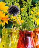 Globe thistle and other summer flowers in colorful glass vases Royalty Free Stock Images