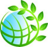 Globe tree Stock Photo