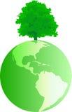 Globe with tree Stock Photography