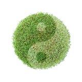 globe vert de Ying-yang photographie stock