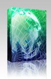Globe world wireframe  box package Royalty Free Stock Photo