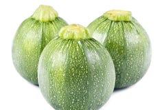 Globe Zucchini Stock Photography