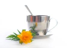 globeflower απομονωμένο τσάι Στοκ Εικόνα