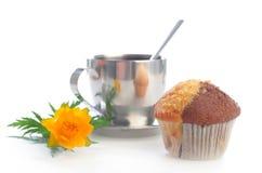 globeflower muffin τσάι Στοκ φωτογραφίες με δικαίωμα ελεύθερης χρήσης
